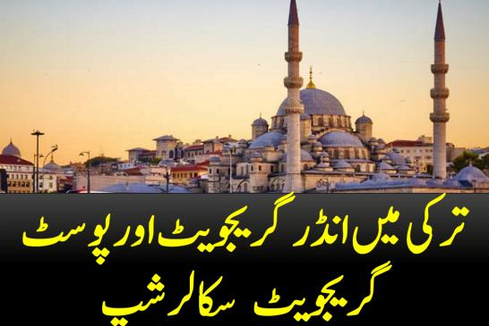 TURKEY SCHOLARSHIPS FOR UNDERGRADUATE AND POSTGRADUATE IN TURKEY 2020