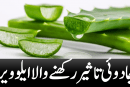 Aloe Vera with magical effects