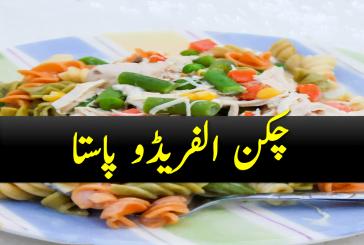 Chicken Alfredo Pasta Recipe